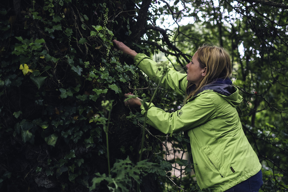 Wild Food Wild Walk - The Lost Gardens of Heligan